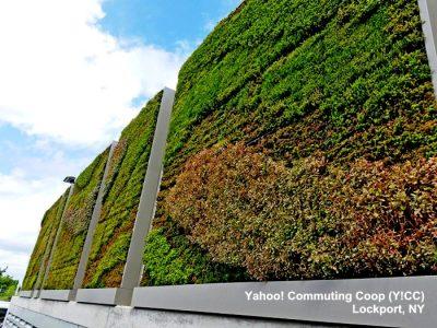 Yahoo! использует стены из зелени, чтобы повысить экологичность своих ЦОД
